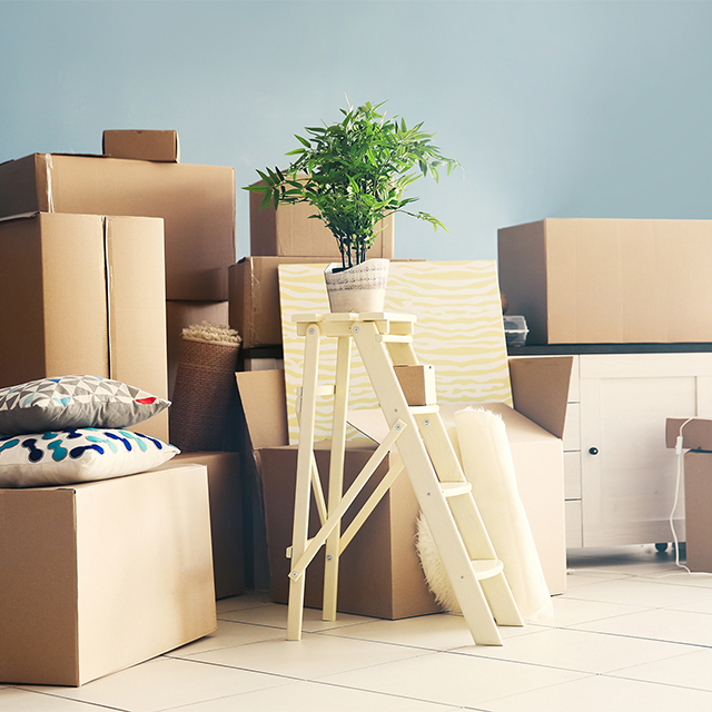 Moving in together tips from a minimalist couple for Minimalist moving house